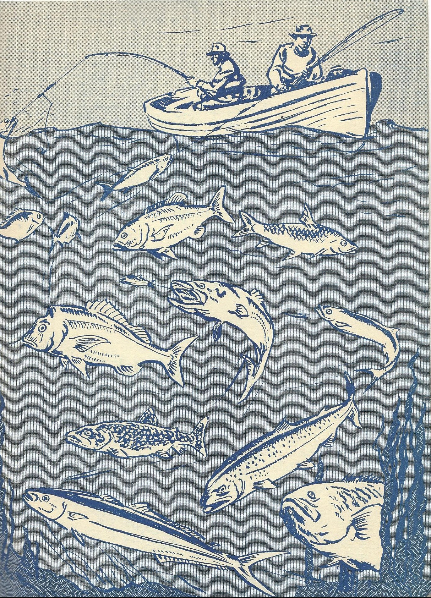 Illustration of two individuals in a boat with fishing poles; multiple varieties of fish are pictured in the water below the boat.